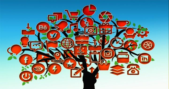 redes-sociais_tree-710658-100599848-org